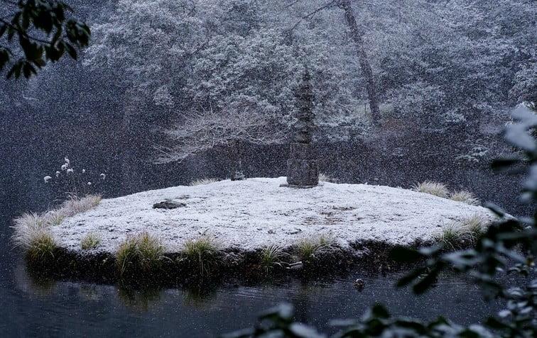京都・金閣寺の見どころ【その8】「安民沢(あんみんたく)」