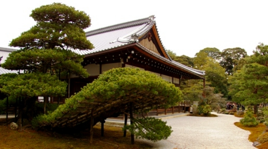 金閣寺の境内